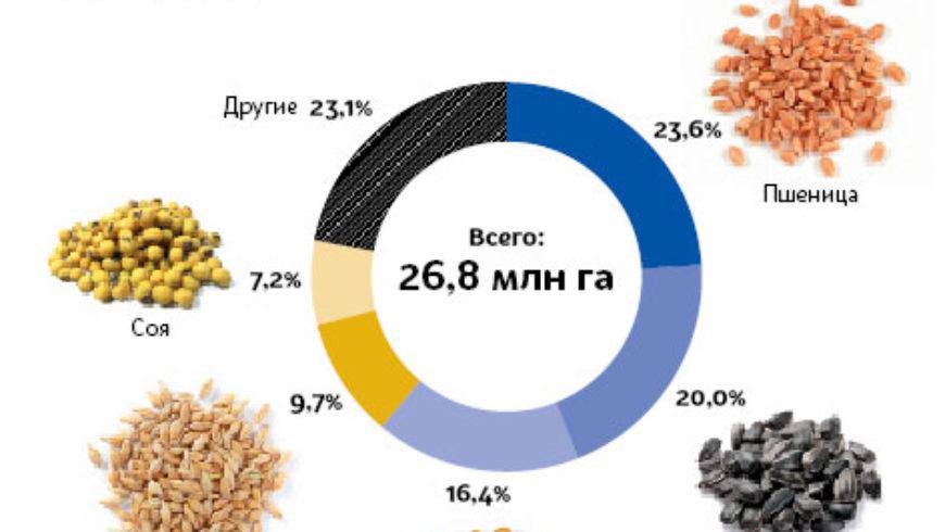 Посевная площадь под урожай 2017 г. в Украине составляет почти 27 млн га — Минагропрод