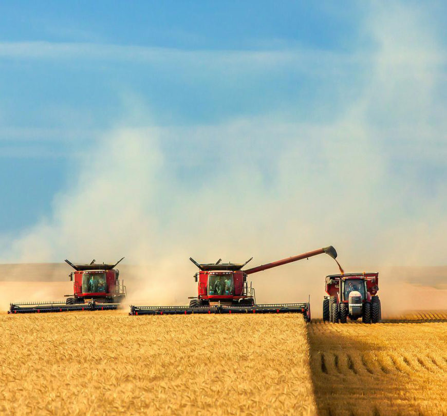 ALFA Smart Agro купує врожай з премією до 600 грн/т